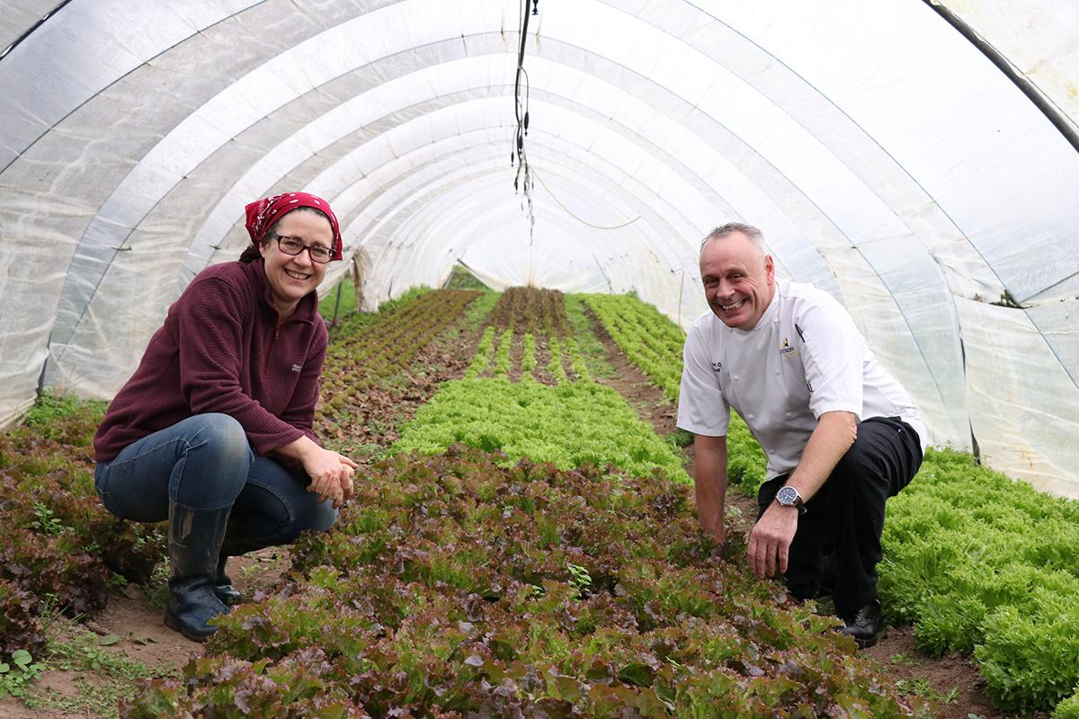 organic farming Ireland